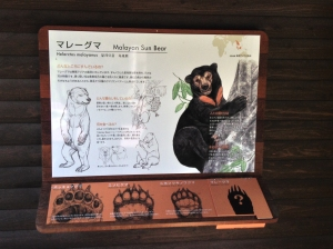 クマの手比較 comparative of bears' hand
