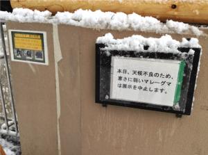 A Snow day Jan.2013