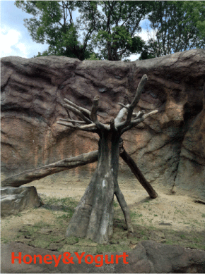 平川動物公園 マレーグマ舎