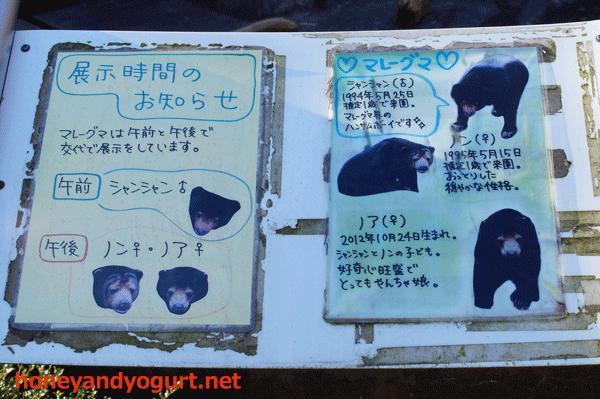 豊橋総合動植物公園 のんほいパーク マレーグマ紹介