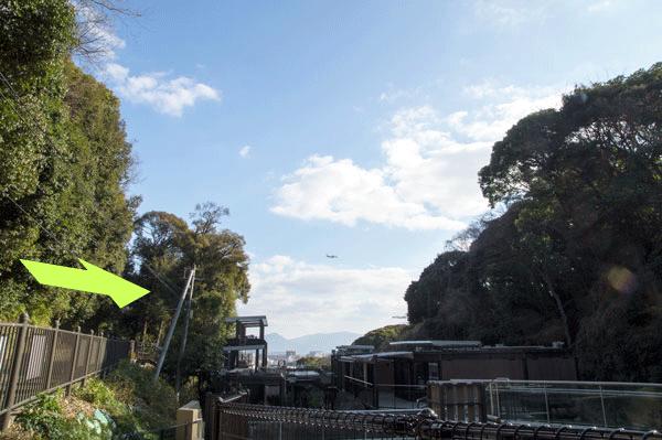 福岡市動植物園 マレーグマ舎からの眺め