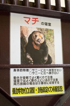 福岡市動物園 旧マレーグマ舎 獣舎内部 マチ