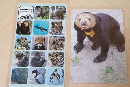 福岡市動物園 マレーグマ マチ シールとポストカード