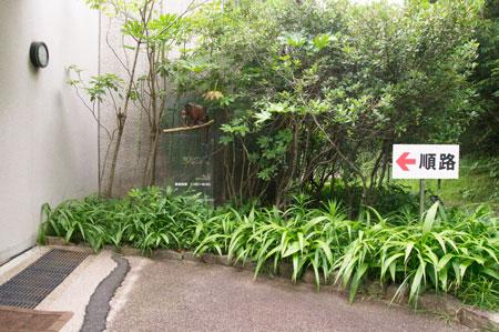 のいち動物公園 ジャングルミュージアム 入り口