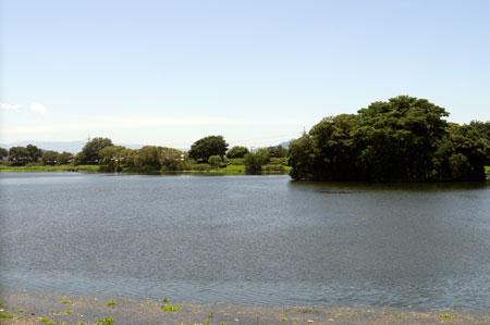熊本市動植物園内 下江津湖