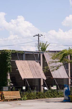 山梨県 甲府市 遊亀公園附属動物園 猛獣舎