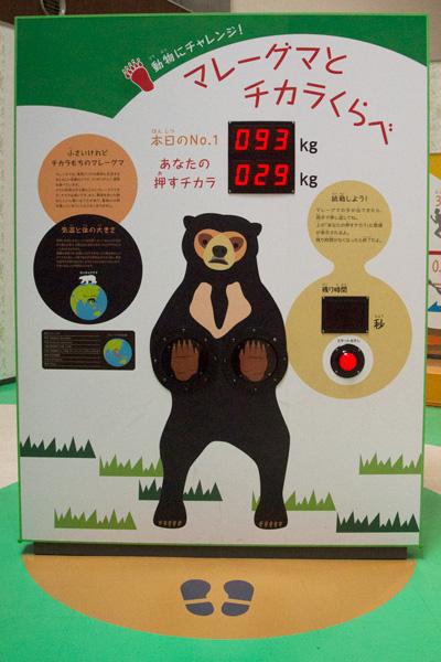 高知県 のいち動物公園 どうぶつ科学館
