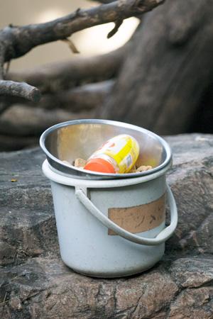 上野動物園 マレーグマ舎 ハチミツ