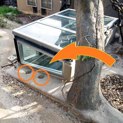 福岡市動物園 マレーグマ舎 地下ピット