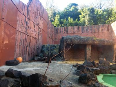 東山動植物園 マレーグマ舎