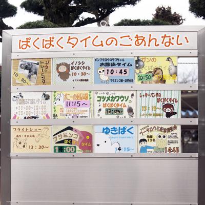 徳山動物園 ぱくぱくタイム