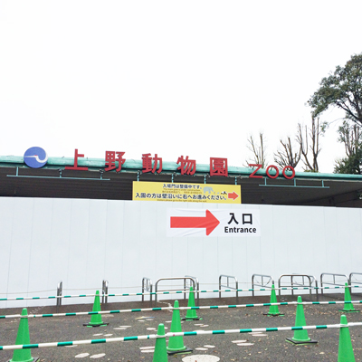 上野動物園 入口 工事中