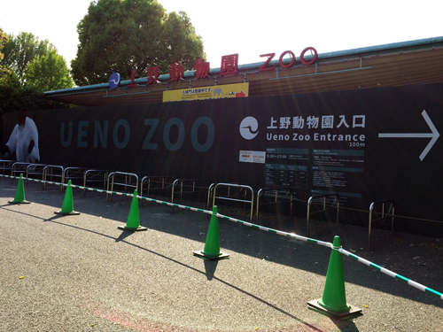 上野動物園 正門 工事中