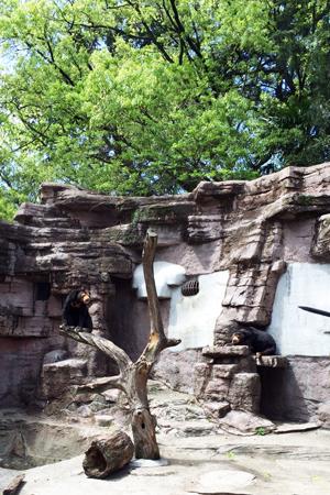 天王寺動物園 マーズ マーサ