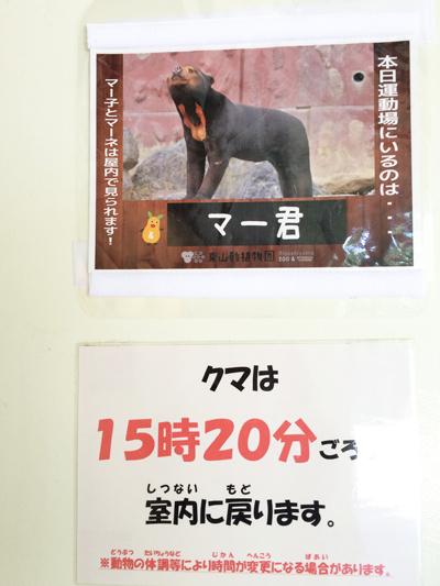 東山動物園 マレーグマ舎