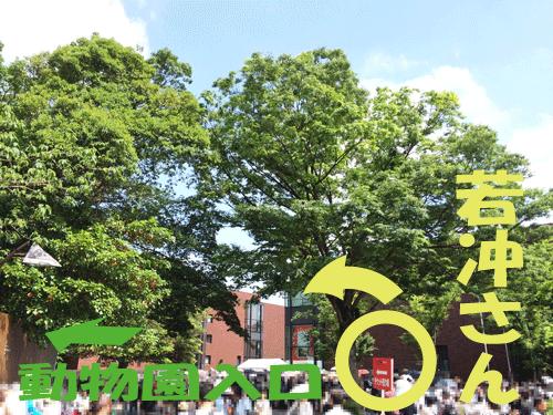 上野動物園 入口