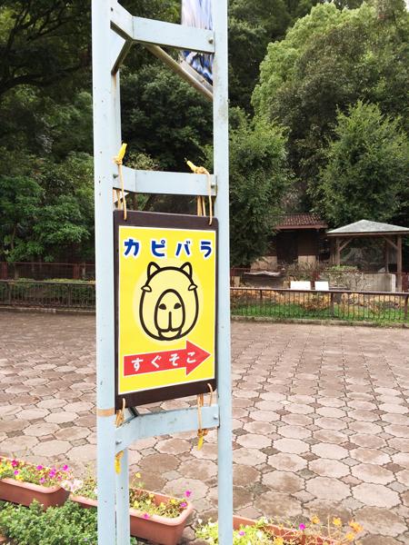 とべ動物園 カピバラ舎