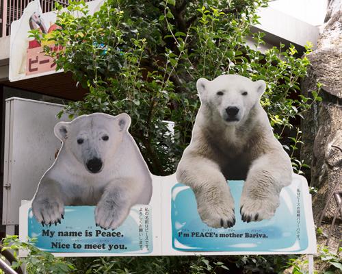 とべ動物園 ベアストリート 看板