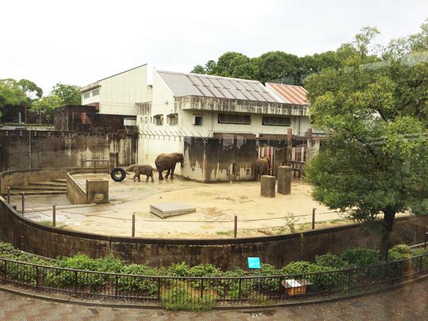 とべ動物園 レストラン
