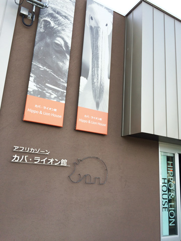 円山動物園 アフリカゾーン