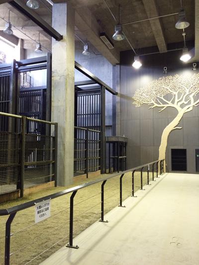 円山動物園 キリン舎