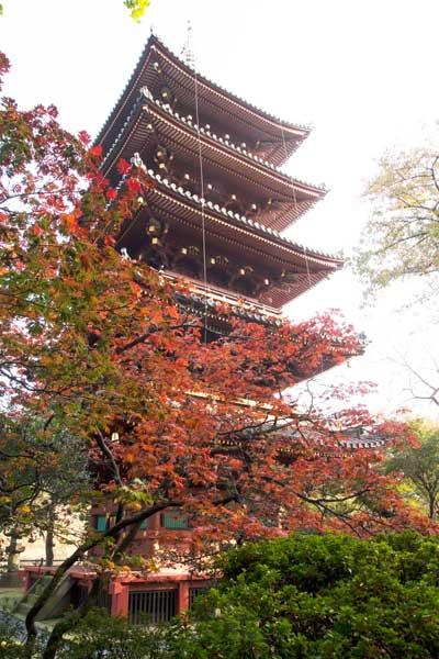 上野動物園 五重塔