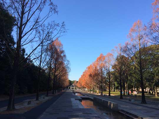 豊橋総合動植物公園 園内
