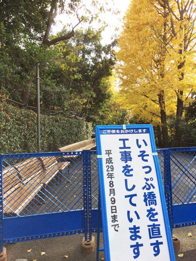 上野動物園 園内 工事