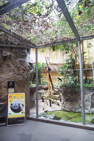 のいち動物公園 ジャングルミュージアム