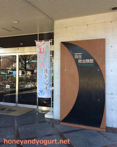 上野動物園 ビバリウム