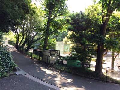 福岡市動植物園 園内