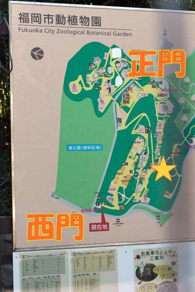 福岡市動植物園 西門 地図