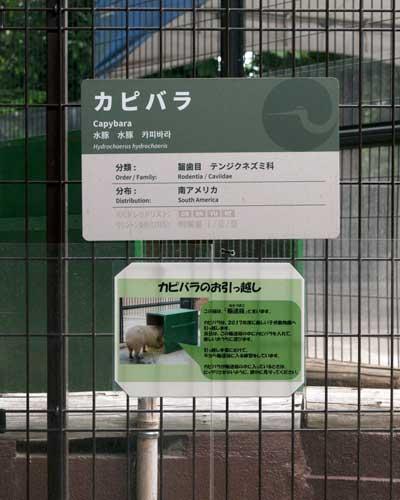 上野動物園 西園 子ども動物園