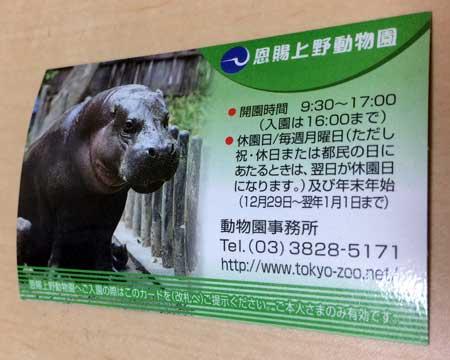 上野動物園 年間パスポート