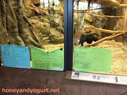 円山動物園 熱帯雨林館