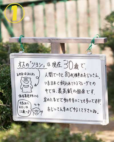 徳山動物園 マレーグマ舎