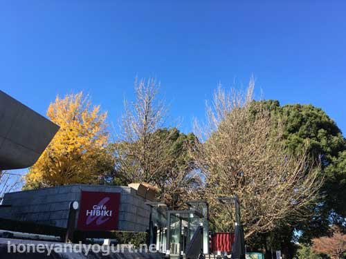 上野公園 カフェ