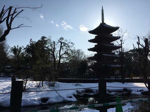 上野動物園 園内