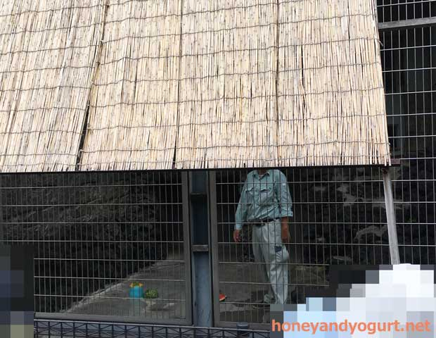 遊亀公園附属動物園 マレーグマ舎