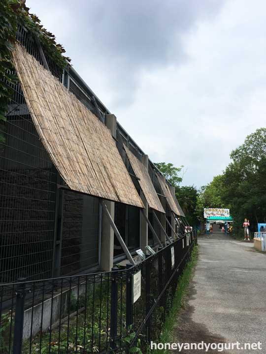 遊亀公園附属動物園 園内 猛獣舎