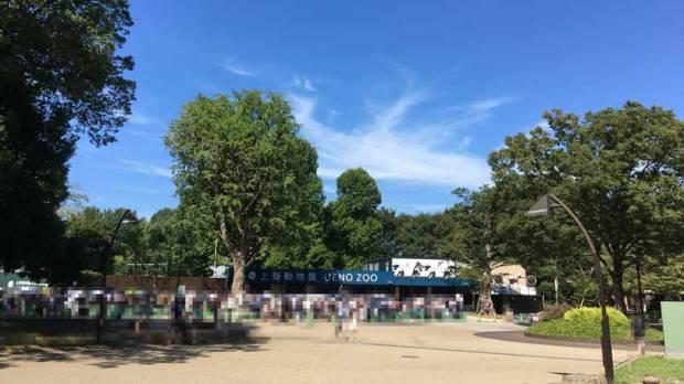 上野動物園 仮設表門