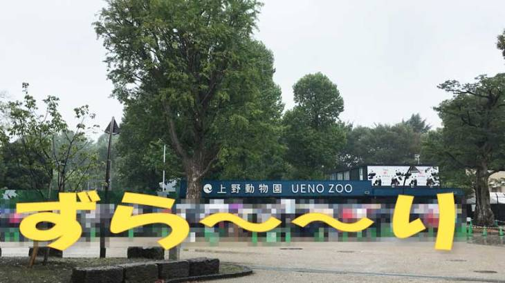 上野動物園 仮設の表門
