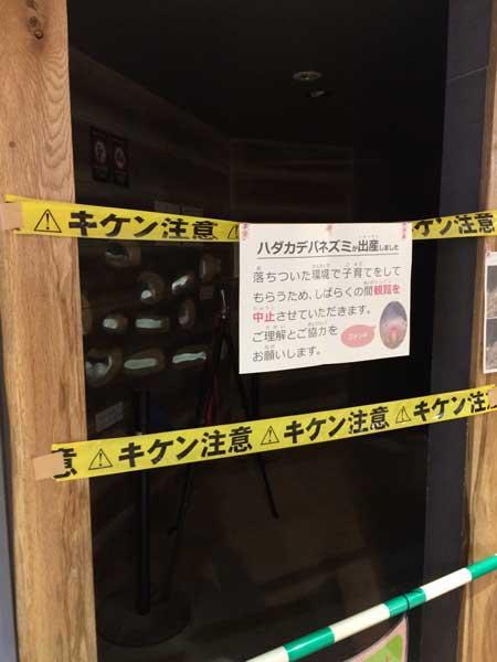 円山動物園 園内