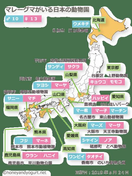 日本の動物園で会えるマレーグマ