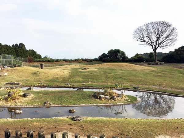 平川動物公園 アフリカ園